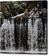 Winter Woodland Waterfall Canvas Print