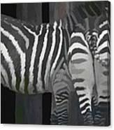 Winter Zebras Canvas Print