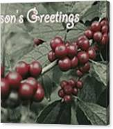 Winterberry Greetings Canvas Print