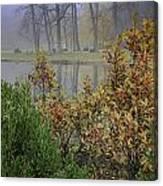Winterberry In Fog Canvas Print