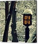 Wintered Lantern Canvas Print