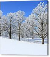 Winter's Best Canvas Print