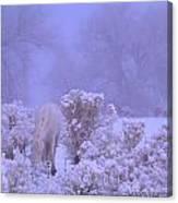 Winter's Blanket Of Snow  Canvas Print