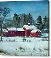 Winter's Colors Canvas Print