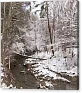 Winter's Country Stream Canvas Print