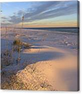 Winter's Day Canvas Print