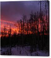 Winter's Fire Canvas Print
