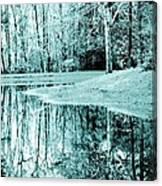Winter's First Snowfall Canvas Print