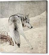 Winters Kill Canvas Print