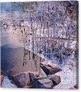 Winters Magic Canvas Print