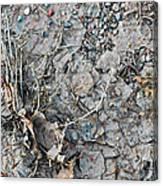 Winter's Mud Canvas Print