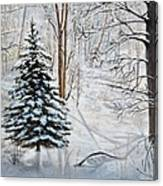 Winter's Peace Canvas Print