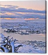 Winters River Canvas Print