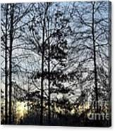 Winter's Trees At Dusk Canvas Print