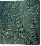 Winter's Work 3 Canvas Print