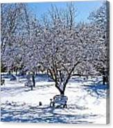 Wintry Day At The Park Canvas Print