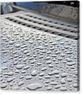 Wipers Canvas Print