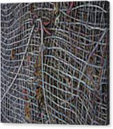 Wire Mesh Canvas Print