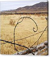 Wired Western Canvas Print