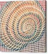 Wireframed Spiral Canvas Print