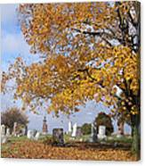 Wisconsin Boneyard 2 Canvas Print