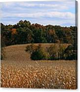 Wisconsin Fields In Late Summer Canvas Print