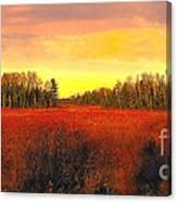 Wisconsin Winter Canvas Print