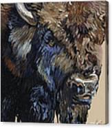 Wise Plains Drifter Canvas Print