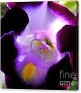 Wishbone Flower Canvas Print