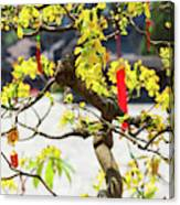 Wishing Tree At The Tomb Of Emperor Canvas Print
