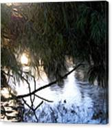 Wishkah River Canvas Print