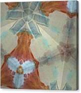Wisp Of Tucson 1 Canvas Print