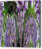 Wisteria Abstract Canvas Print