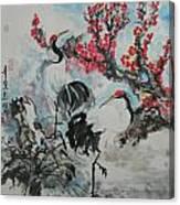 Wit The Plum Tree Canvas Print