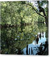 Withlacoochee River Reflections Canvas Print
