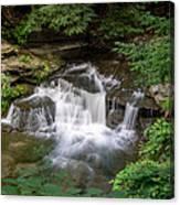 Wolf Creek  7k01600 Canvas Print