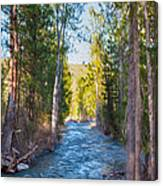 Wolf Creek Flowing Downstream  Canvas Print