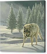 Wolf In Fog    Canvas Print