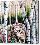 Wolf In Woods Canvas Print