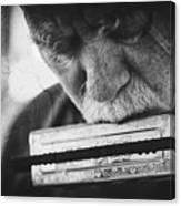 Wolf With Harmonica Canvas Print