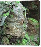Woman In Rock Canvas Print