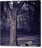 Woman Under A Tree Canvas Print