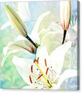 Wonderful Lilies Canvas Print