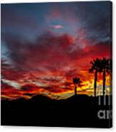 Wonderful  Sunrise Canvas Print