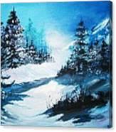 Wonders Of Winter Canvas Print