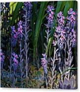 Wondrous Little Forest Canvas Print