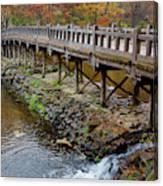 Wood Bridge And Autumn Color Canvas Print