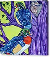 Wood Duck Tree Canvas Print