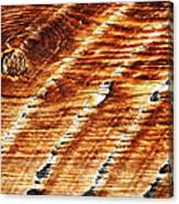 #woodgrain Canvas Print