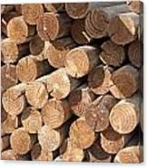 Wood Logs Canvas Print